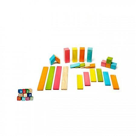 Tegu Magnetic Block - 24 Piece Set